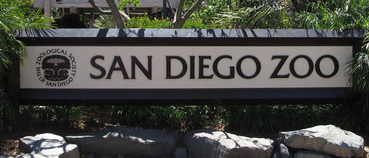 San Diego Hotel Zoo & Safari Package