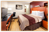 California Hotel Safari Park Package